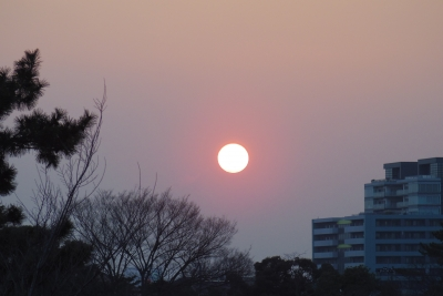2012-01-01-0001.jpg