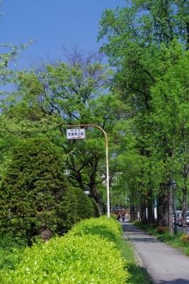 2014-04-23-1015.jpg
