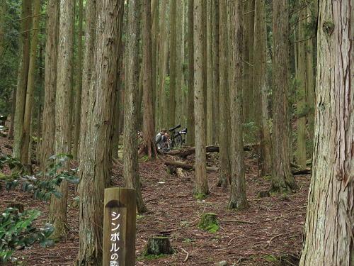 15_6_22_miyama (2)(1)