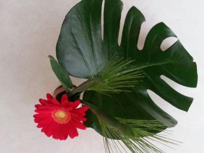 十二月の生け花③