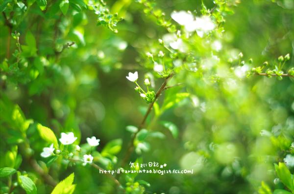 blog439.jpg