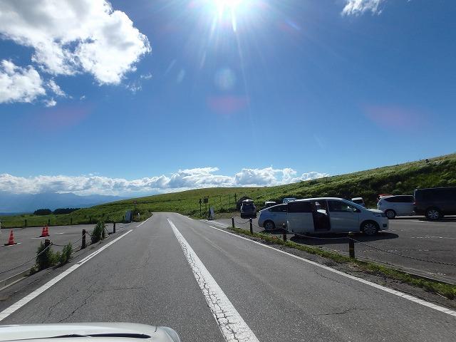 20150721車山肩ニッコウキスゲ満開から終焉へ (39)