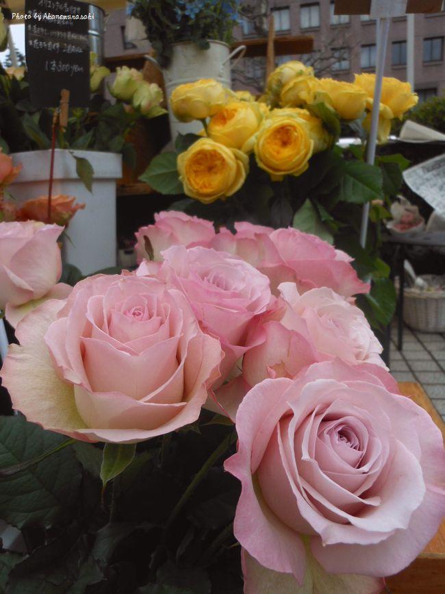 お花屋さん2