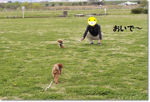 _MG_9301-crop.jpg