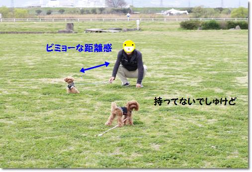 _MG_9303-crop.jpg