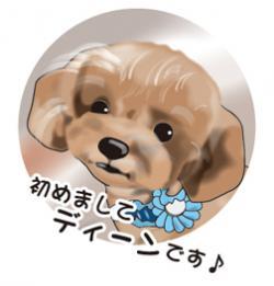 img_0_convert_20140530203738_20150305073926cac.jpg