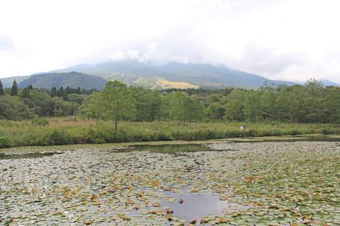 妙高山といもり池-1