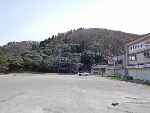 夏泊半島椿山2015-3