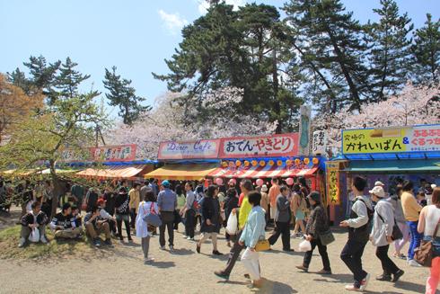 弘前城桜祭り2015昼-2