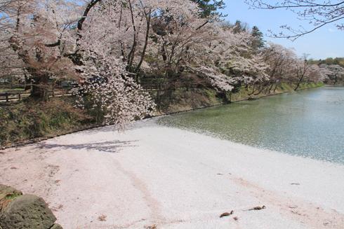 弘前城桜祭り2015昼-3