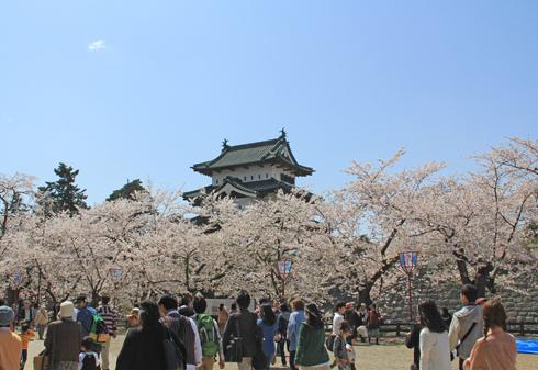弘前城桜祭り2015昼-5