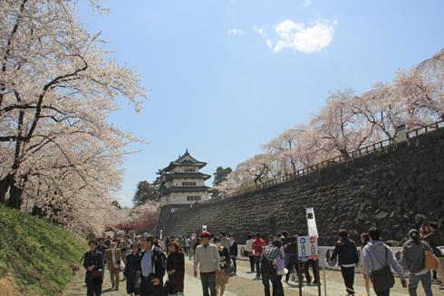 弘前城桜祭り2015昼-9