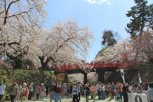 弘前城桜祭り2015昼-12