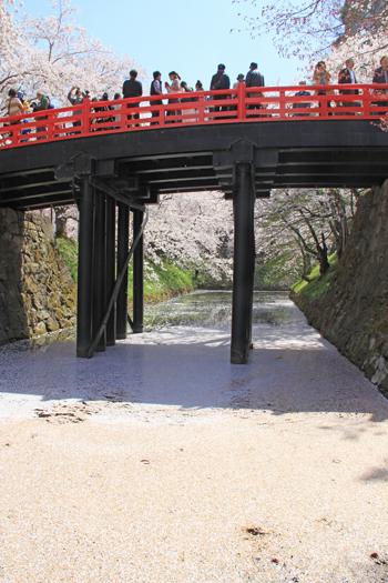 弘前城桜祭り2015昼-15