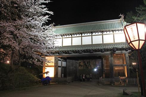 弘前城桜祭り2015夜桜-1