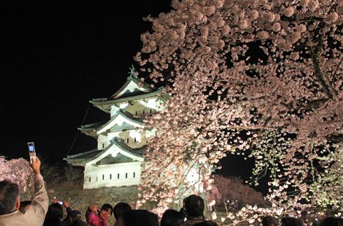 弘前城桜祭り2015夜桜-6