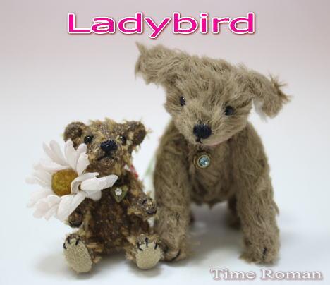 Ladybirdさま2