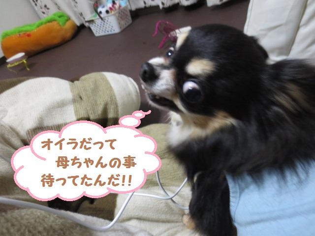 IMG_4143.jpg
