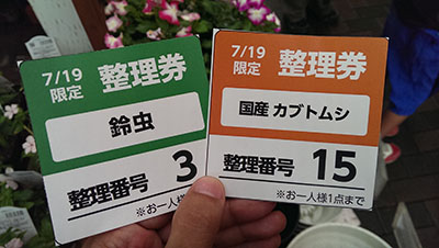 kabutomusi220150720.jpg