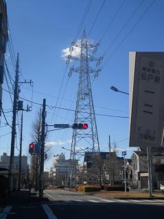 松戸線12号