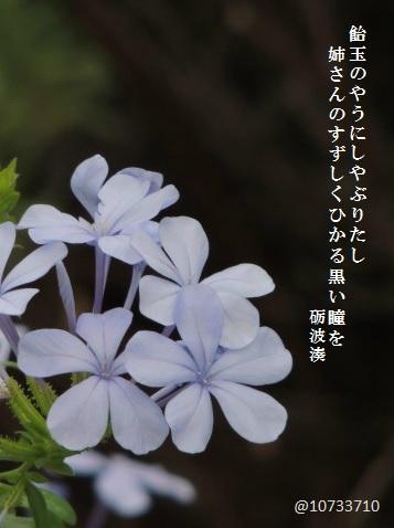 myoukou-01