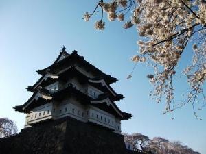 150423お城と桜