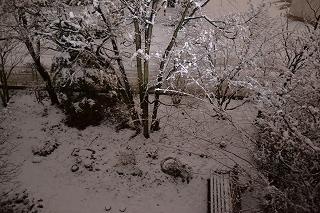 2015130庭雪