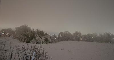 1216雪景色