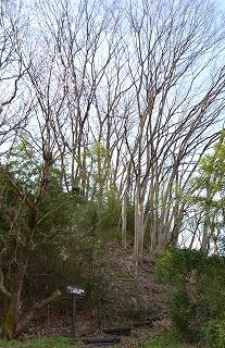 グリーンベルト上田東公園