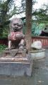 11報国寺狛犬