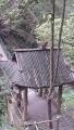 45自然生態猴区