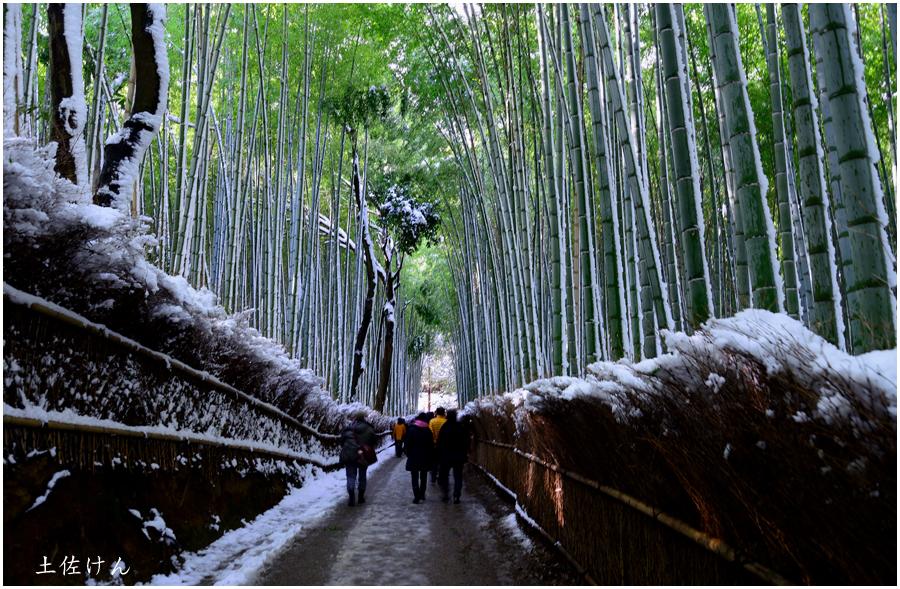 雪の京都6