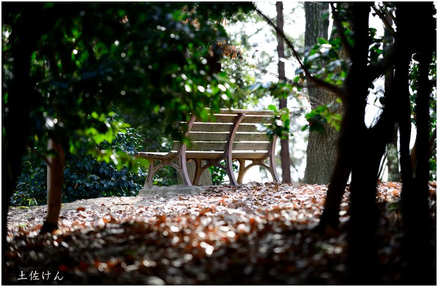 都市緑化植物園4