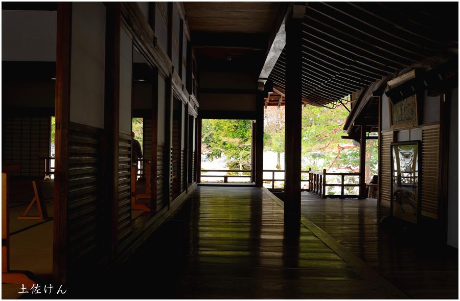 雪の京都5