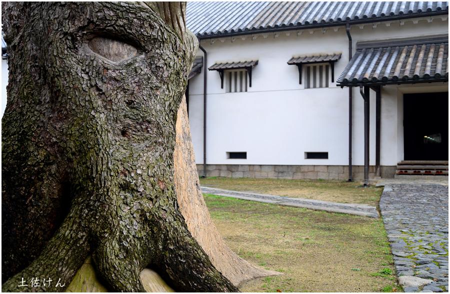 鴻池新田会所5
