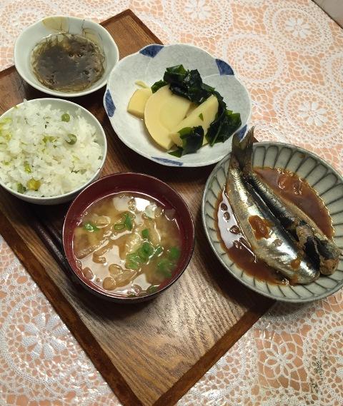 takenoko8.jpg