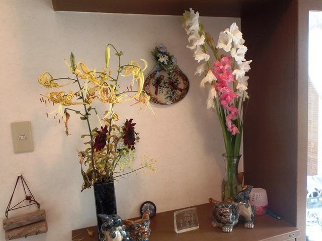 玄関の花20150718