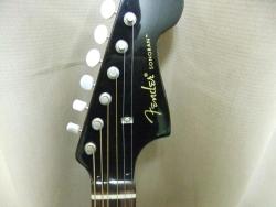 Fender02.jpg