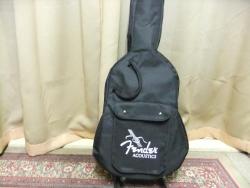 Fender110.jpg