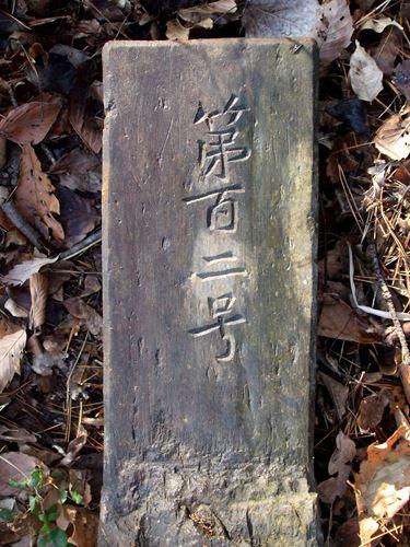 iwashiyama_m12.jpg