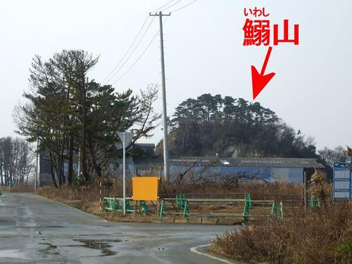 iwashiyama_m2.jpg