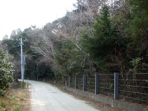 izushima7.jpg