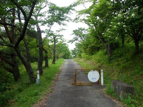 mizusawa_h_NE5.jpg