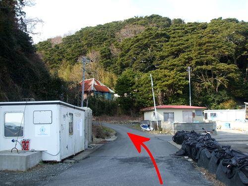 tashirojima1.jpg