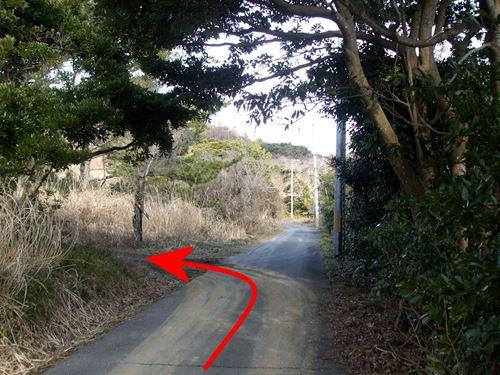 tashirojima5.jpg