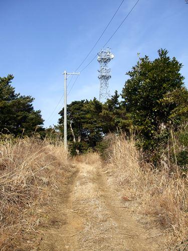 tashirojima6.jpg