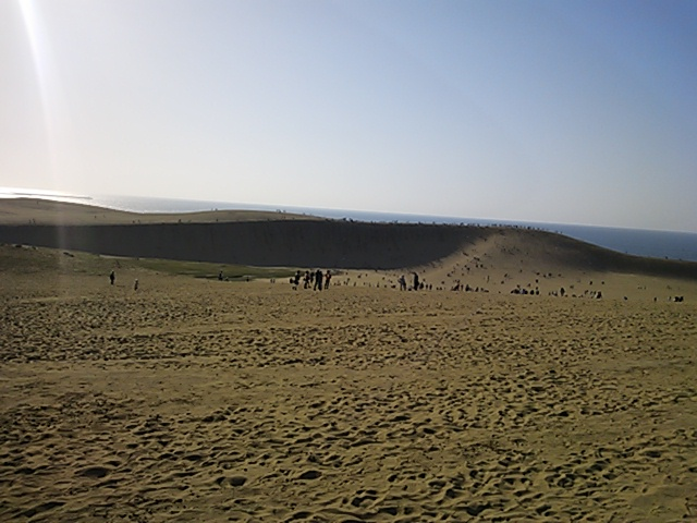 鳥取砂丘2015-1