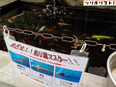金魚坂004