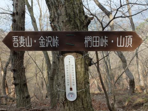 肩の広場 温度計