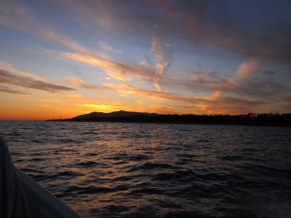 26.12.23ボウズのタチ魚釣り 066_ks
